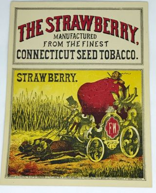 TOBACCO] The Strawberry; Manufactured from the finest Connecticut Seed Tobacco