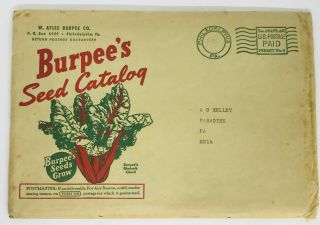 TRADE CATALOG] Burpee's Seeds That Grow 1942; New for 1942 - Burpee's Yellow Cosmos. W. Atlee...