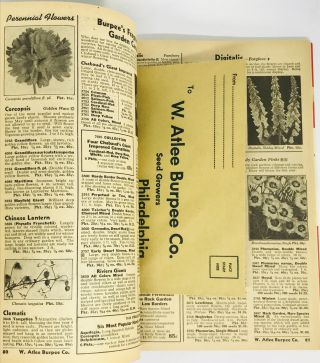 [TRADE CATALOG] Burpee's Seeds That Grow 1942; New for 1942 - Burpee's Yellow Cosmos
